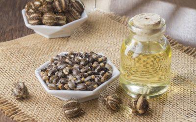 L'huile de ricin bio: une huile végétale aux multiples bienfaits