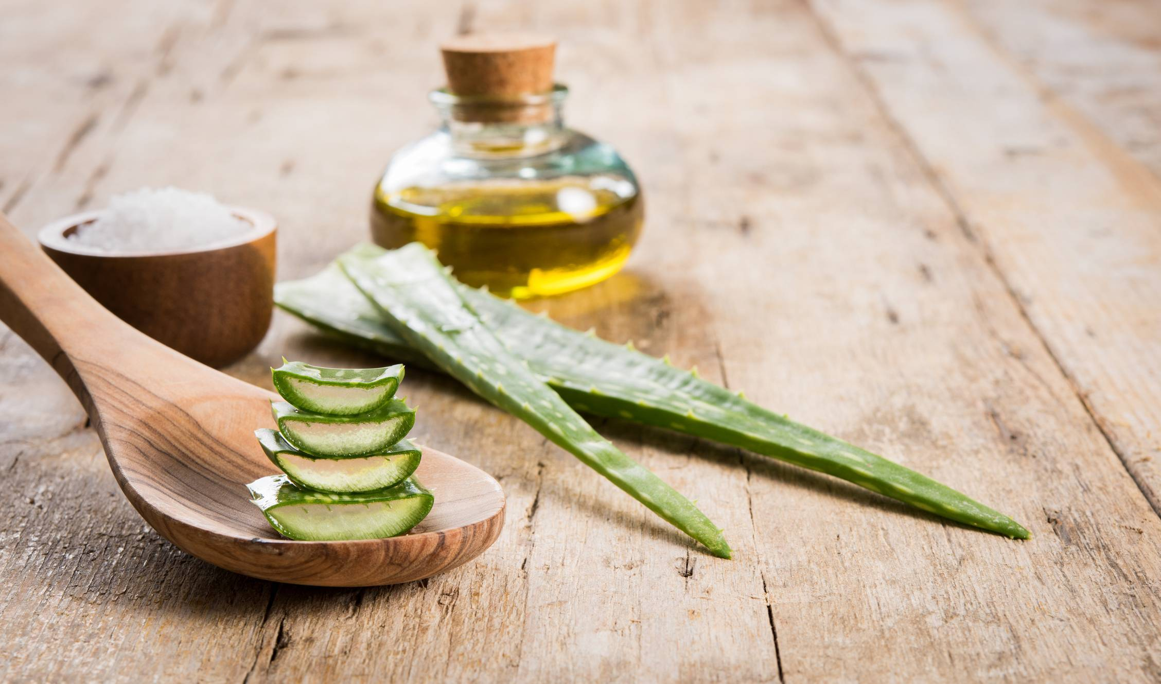 l'aloe vera pour une hydratation intense de votre peau